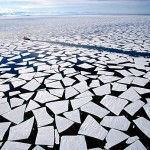 Incredible Antarctica Pictures_8